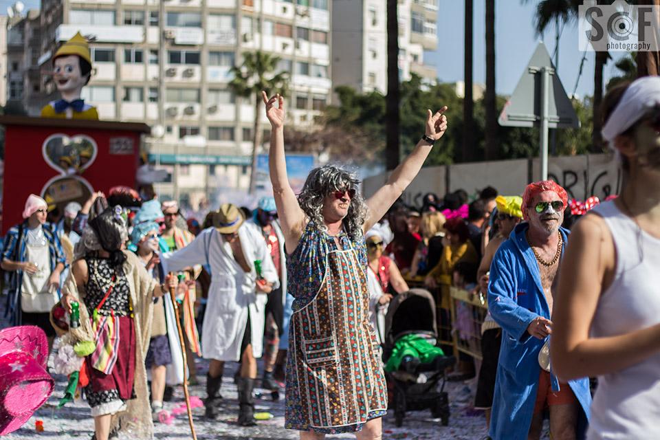 Carnival Parade 2017 29