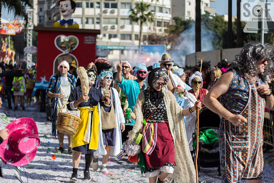 Carnival Parade 2017 30