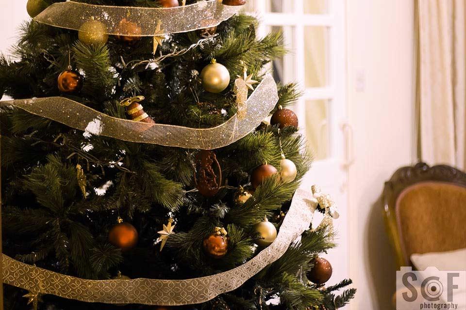 Christmas Tree - Deuteranomaly
