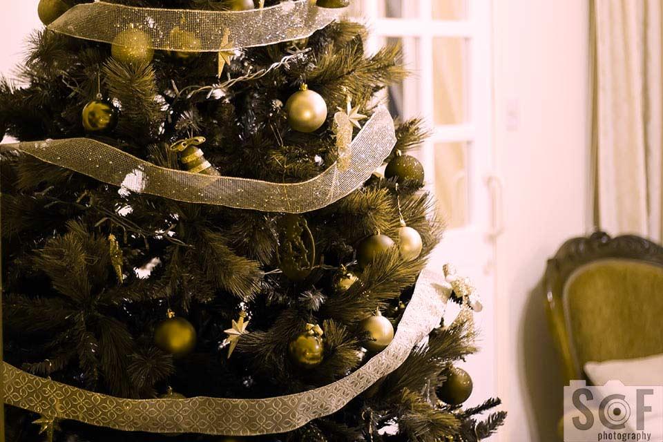 Christmas Tree - Deuteranopia