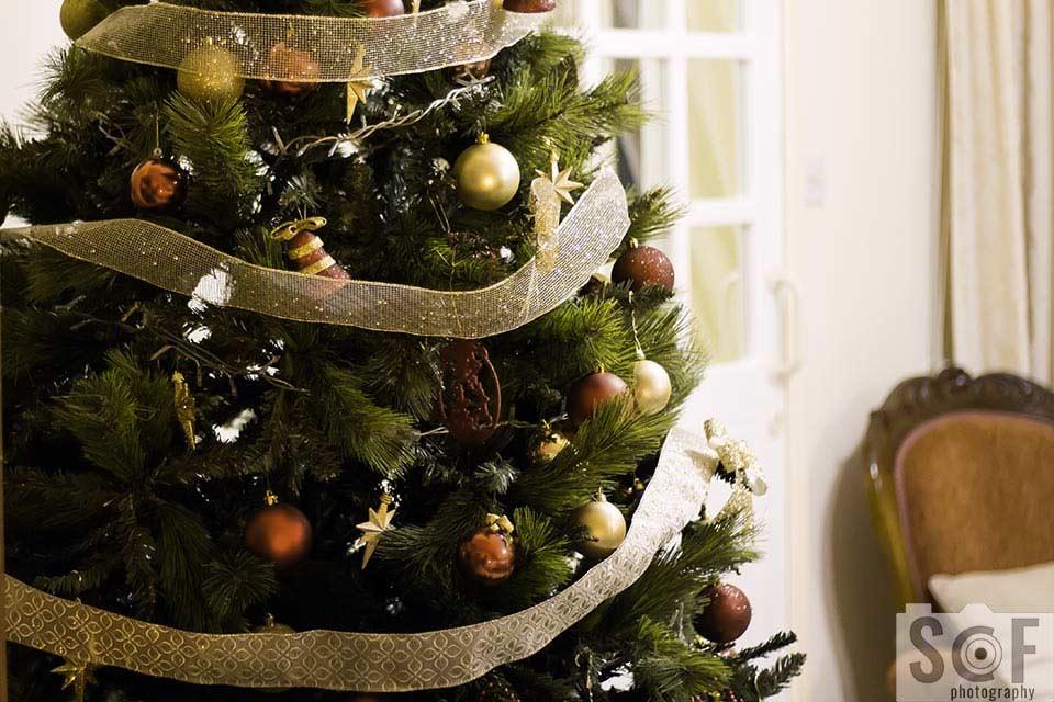 Christmas Tree - Protanomaly