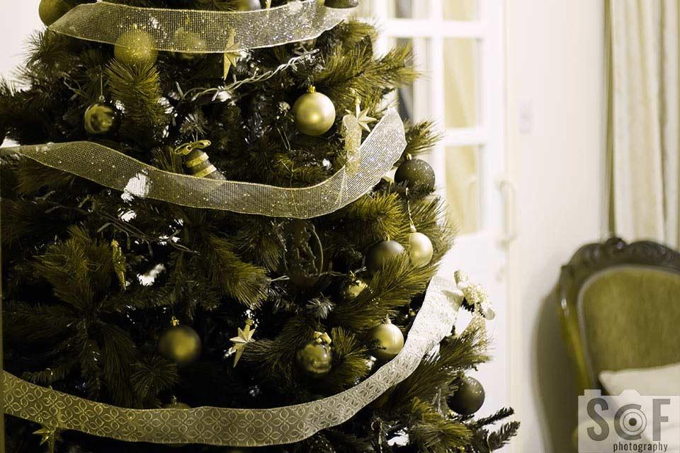 Christmas Tree - Protanopia