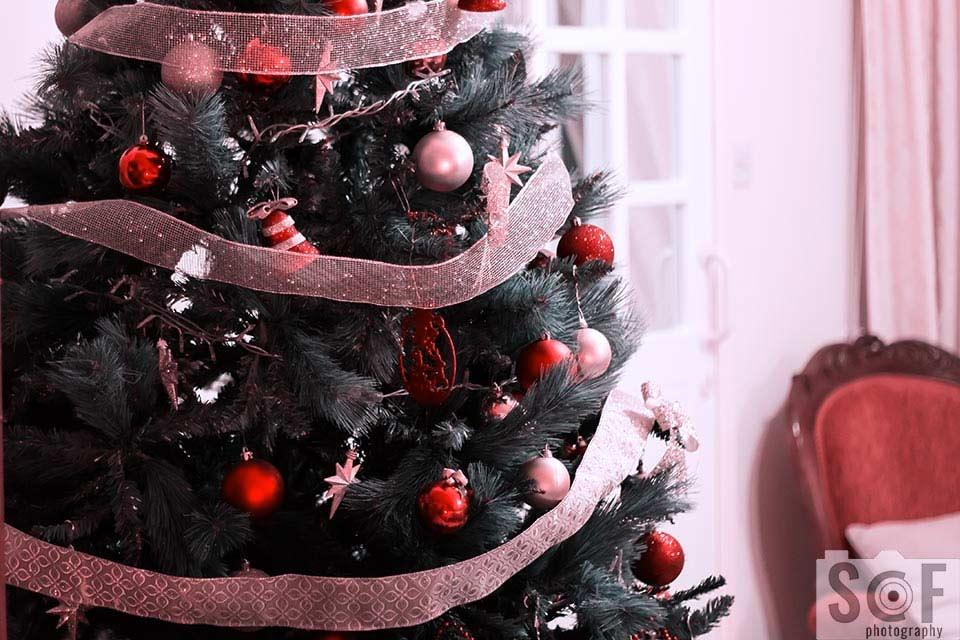 Christmas Tree - Tritanopia