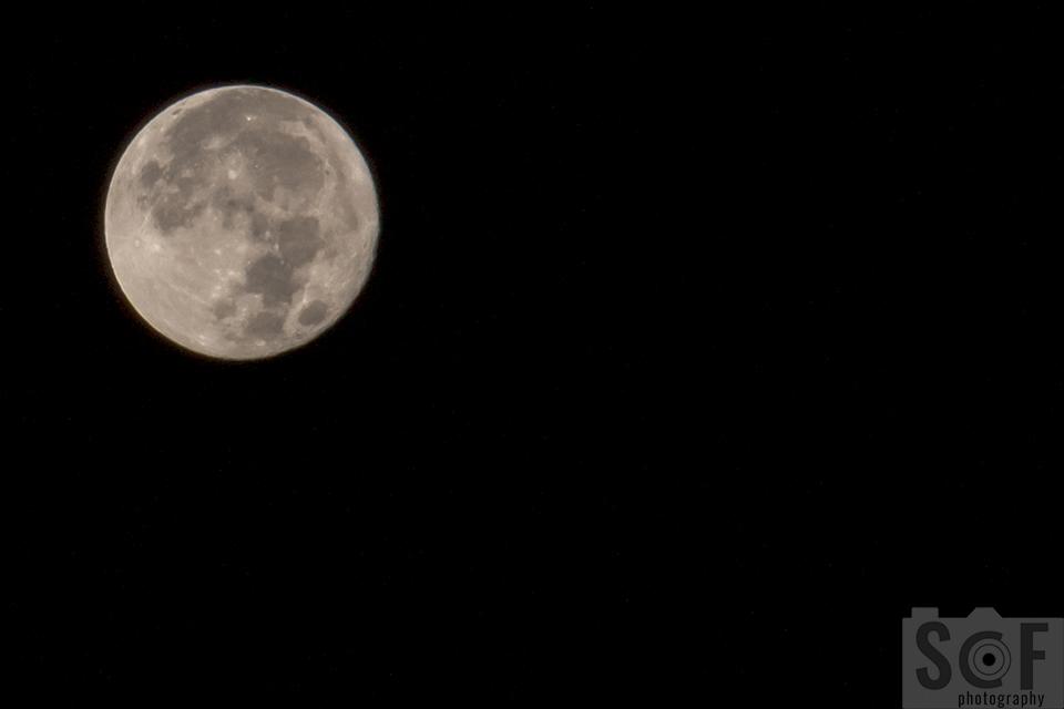 Super Moon 14 November 2016 (7)